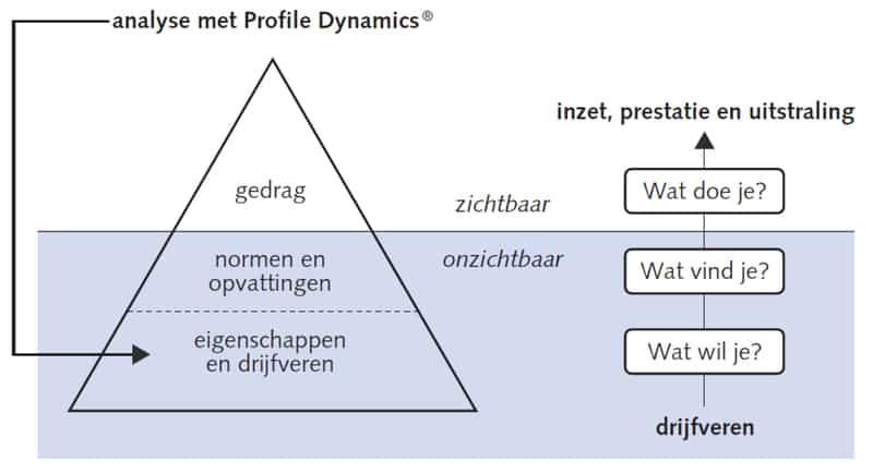Profile Dynamics Analyse IJsberg Jawel